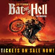 Bat out of hell artwork